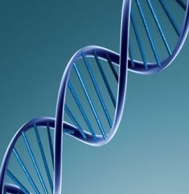 A healthy lifestyle acts by epigenetics to turn on & off genes linked to cancer risk